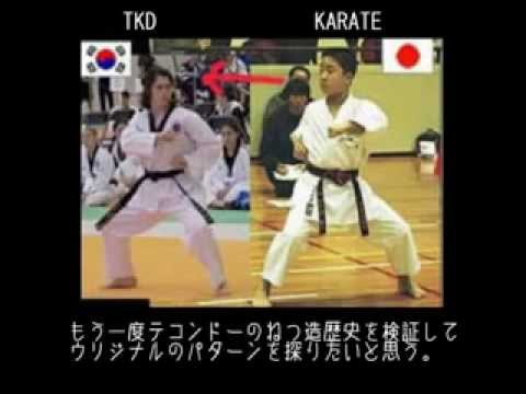 【武術だけじゃないだろ】『韓国』嫌韓論と武術盗作論争〜韓国の武術は程度の差こそあれ総て日本の影響を受けた